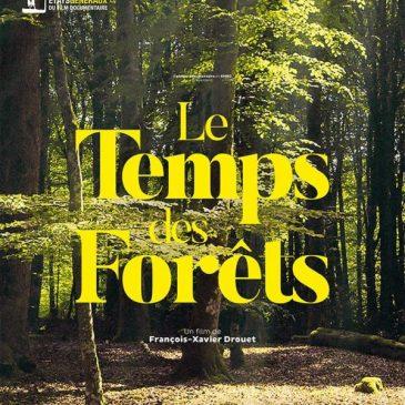 Ciné débat /Le temps des forêts